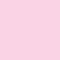 Ballerina paint color DE5036 #FED5E9