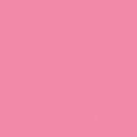 Rock 'n' Rose paint color DE5060 #FC8AAA