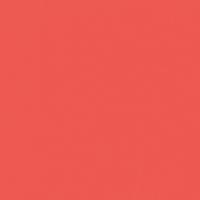 Amour paint color DE5104 #EE5851