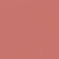 Rouge paint color DE5116 #C8756D