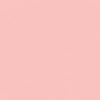 Ladylike paint color DE5121 #FFC3BF