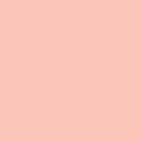 Peach Fuzz paint color DE5142 #FFC7B9