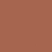 Ruddy Oak paint color DE5188 #A5654E