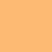 Spiced Nectarine paint color DE5193 #FFBB72