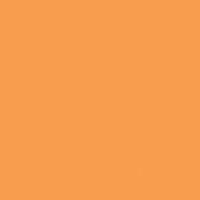 Tangerine Tango paint color DE5194 #FF9E4B