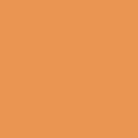 Yams paint color DE5200 #EB9552