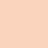 Prairie Dune paint color DE5205 #FBD5BD