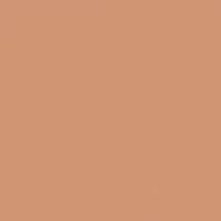 Tawny Amber paint color DE5214 #D19776