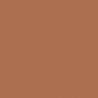 Autumn Umber paint color DE5216 #AE704F