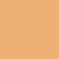 Beeswax paint color DE5242 #F0B073