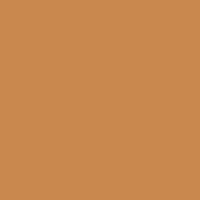 Ginger Spice paint color DE5271 #CA884E