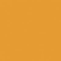 Persimmon paint color DE5293 #E59B34