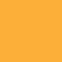 Ripe Pumpkin paint color DE5307 #FFAF37