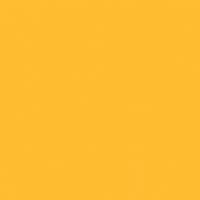 Vibrant Honey paint color DE5314 #FFBD31