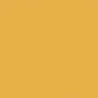 Lion's Mane paint color DE5319 #E8AF49
