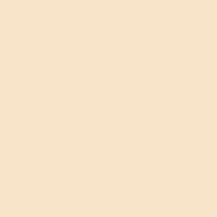 Quiet Splendor paint color DE5323 #FAE6CA
