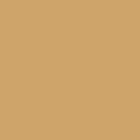 Root Beer Float paint color DE5326 #CFA46B