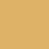 Burst of Gold paint color DE5333 #DEB368