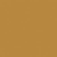Golden Slumber paint color DE5335 #B98841