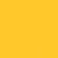 Bumblebee paint color DE5342 #FFC82A