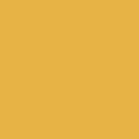 Honey Glow paint color DE5354 #E8B447