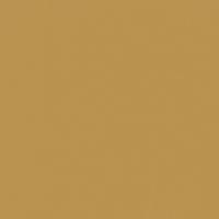 Maple Syrup paint color DE5362 #BB9351