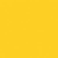 Lemon Punch paint color DE5398 #FECF24