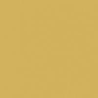 Tanami Desert paint color DE5445 #D0B25C