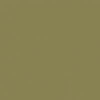 Aged Eucalyptus paint color DE5496 #898253
