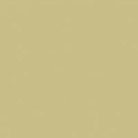 Olive Hint paint color DE5500 #C9BD88