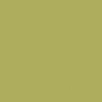 Palm Frond paint color DE5522 #AEAD5B