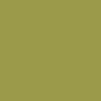 Lazy Lizard paint color DE5523 #9C9C4B