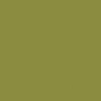 Vegetable Garden paint color DE5524 #8B8C40