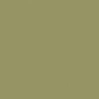 Military Green paint color DE5530 #969565