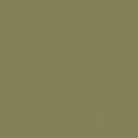 Dark Cavern paint color DE5531 #838254