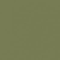Bonsai paint color DE5538 #787B54