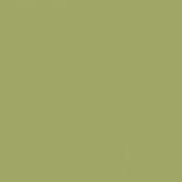 Spanish Olive paint color DE5543 #A1A867