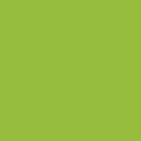 Chive  paint color DE5559 #98BE3C