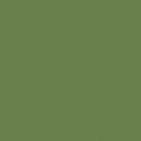 Shaded Spruce paint color DE5587 #688049