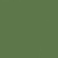 Jolly Green paint color DE5594 #5E774A