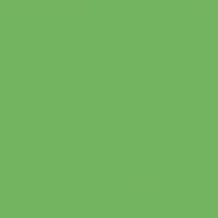 Palm Tree paint color DE5600 #74B560