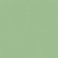 Rolling Hills paint color DE5606 #9ABF8D