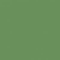 Irish Charm paint color DE5608 #69905B
