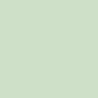 Endive paint color DE5618 #CEE1C8
