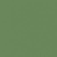 Thicket paint color DE5622 #69865B