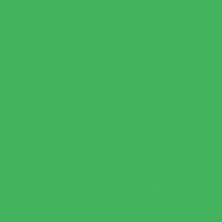Artificial Turf paint color DE5635 #41B45C