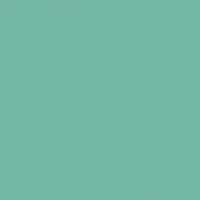 Turtle Lake paint color DE5704 #73B7A5