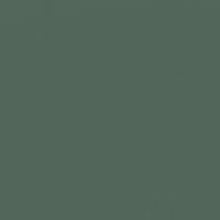 Deep in the Jungle paint color DE5720 #53665A