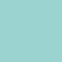 Fountain City paint color DE5723 #9CD4CF