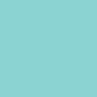 Island Oasis paint color DE5730 #88D9D8